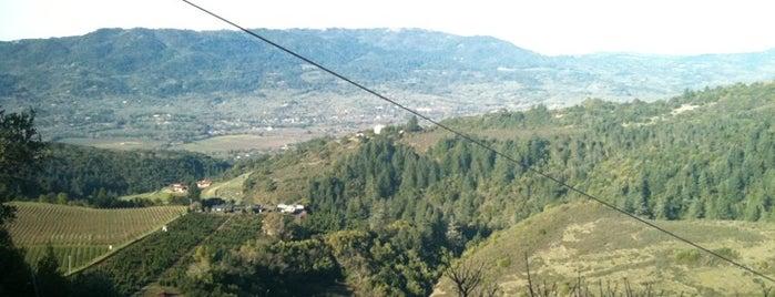Moon Mountain Vineyard is one of napa.