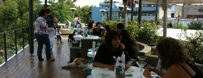Terraza Condesa DF is one of D.F..