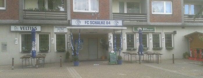 Schalke 04 Vereinsheim is one of Teuctzintliさんのお気に入りスポット.