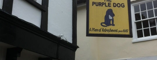 The Purple Dog is one of สถานที่ที่ Miguel ถูกใจ.