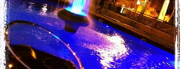 Divino is one of Mallorca noche y fiesta.