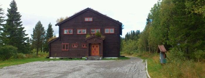 Lognvik Fjellstue is one of Tempat yang Disukai Torstein.