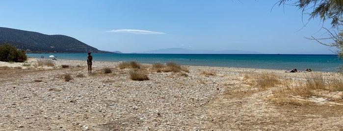Agiassos Beach is one of Νάξος.