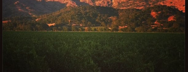 Town of Yountville is one of Napa Valley Favorites.