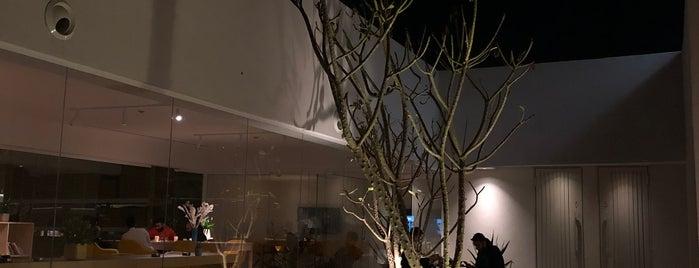 Ashjar Cafe is one of MVi.
