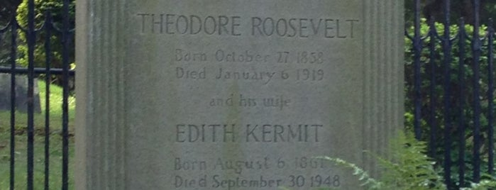 Theodore Roosevelt's Grave is one of New York City.