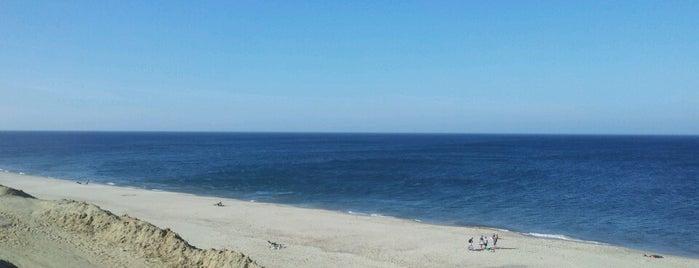 Cape Cod Hangouts