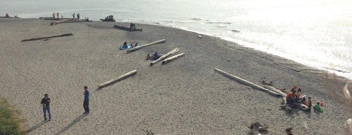 Carkeek Park Beach is one of สถานที่ที่ Gaston ถูกใจ.