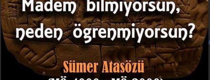 Kültür Bilinçini Geliştirme Vakfı is one of Locais curtidos por Pelin.