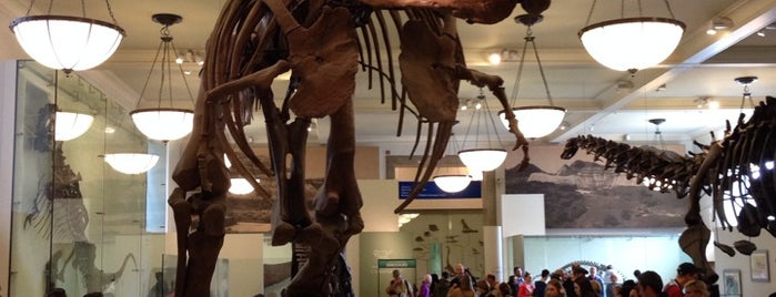 American Museum of Natural History is one of Concierge Top 10 Places for Children.
