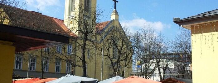 Kaiser-Josef-Platz is one of Orte, die Orhan Veli gefallen.