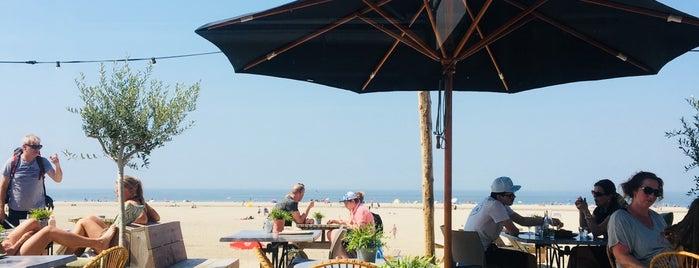 Beachclub Birds is one of Den Haag Scheveningen.