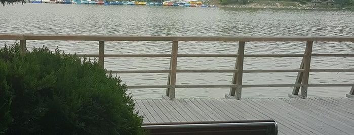 Marina Cafe is one of Eryaman.