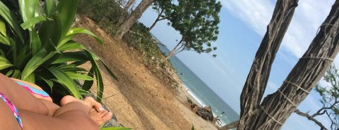 Langosta Beach Club is one of Tempat yang Disimpan Junni.