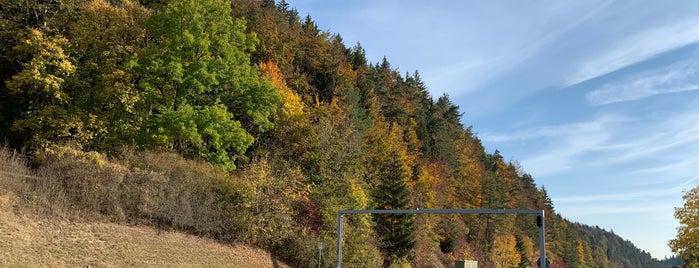 Grenzübergang Neuhaus-Bargen is one of สถานที่ที่ Nieko ถูกใจ.
