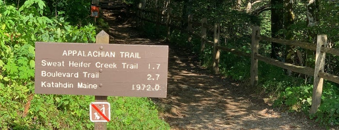 Appalachian Trail Newfound Gap Section is one of Asheville, NC.