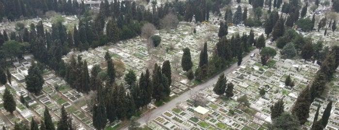 Zincirlikuyu Mezarlığı is one of Lieux qui ont plu à Mujdat.