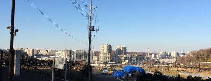 黒川東農村広場 is one of 黒川駅 | おきゃくやマップ.