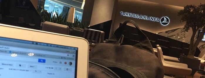 Turkish Airlines CIP Lounge is one of Orte, die Erdem gefallen.