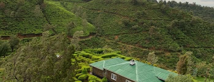 Heritance Tea Factory is one of Gespeicherte Orte von Manal.