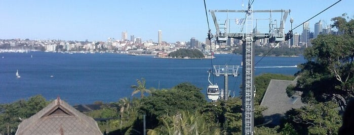 Sky Safari Taronga Zoo is one of Mattさんのお気に入りスポット.