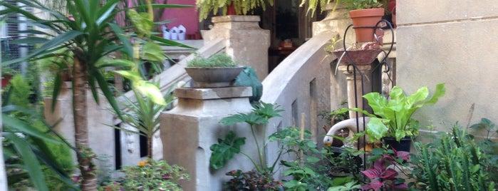 Las Petunias Bio-Bar is one of Lugares favoritos de Valeria.