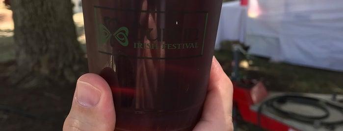 Dublin Irish Festival is one of Heather 님이 좋아한 장소.