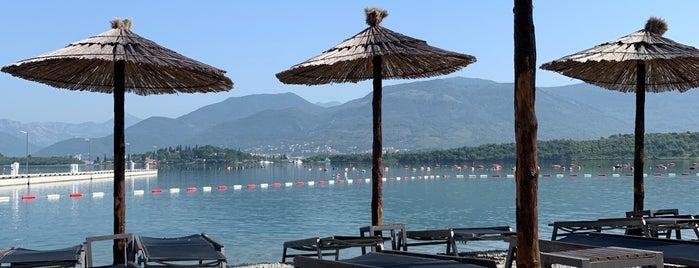 Movida Montenegro is one of Julia 님이 좋아한 장소.
