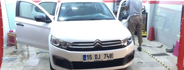 Ziebart Auto Protection Services is one of Posti che sono piaciuti a Gözde.
