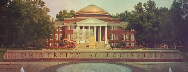 Università di Louisville is one of NCAA Basketball.