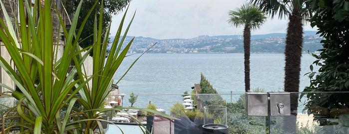 Azur Yeniköy is one of bakılacak.