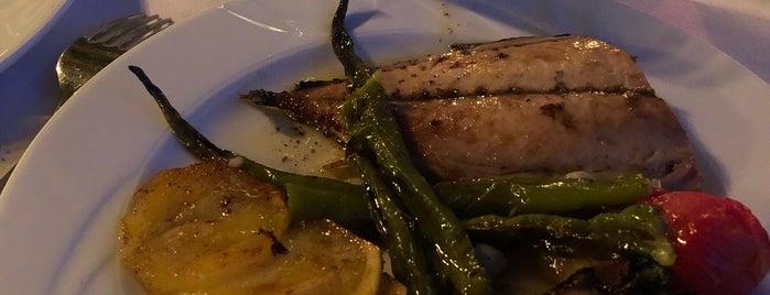 Beyaz Kayalar Restaurant is one of RAKI & BALIK  (HESAPLI).
