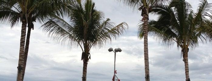 Mi Querencia is one of Destination Puerto Vallarta.