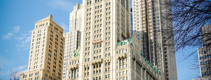 Woolworth Building is one of Lower Manhattan.