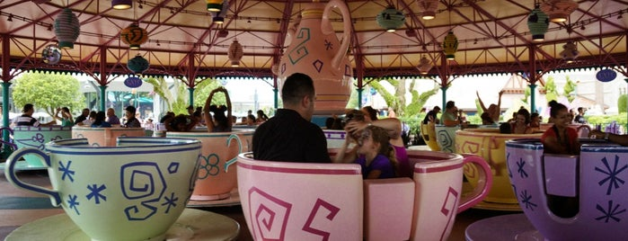 Mad Tea Party is one of Walt Disney World.