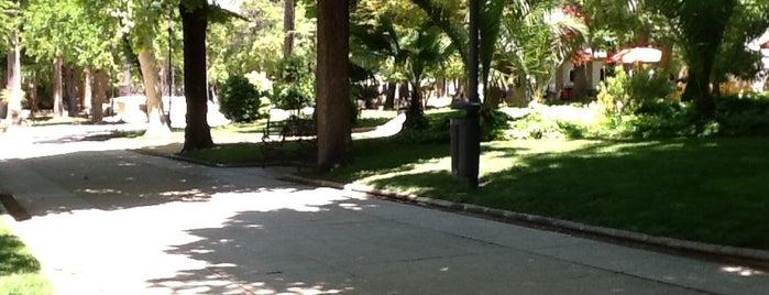Parque Ramón Santaella is one of Actividades de Ocio en Baena.