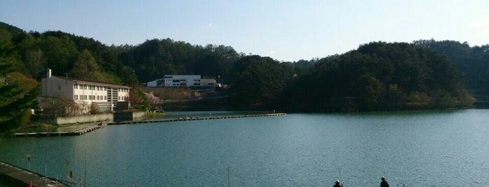 美鈴湖 is one of アウトドア&景観スポット.