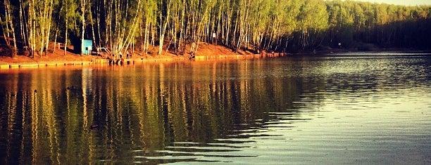 Ландшафтный заказник «Тропарёвский» is one of Территория красивых тел.