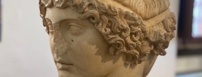 Museo di Scultura Antica Giovanni Barracco is one of Rome.