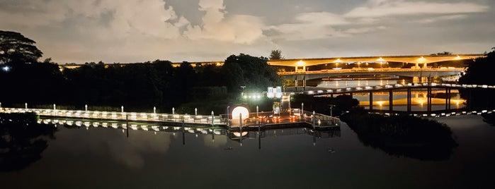 Sengkang Floating Wetland is one of Singapore.