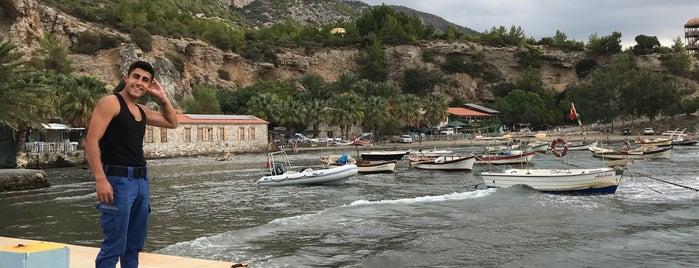 Kemaldere Jandarma Karakolu ve Karina balıkçısı is one of Orte, die Sina gefallen.