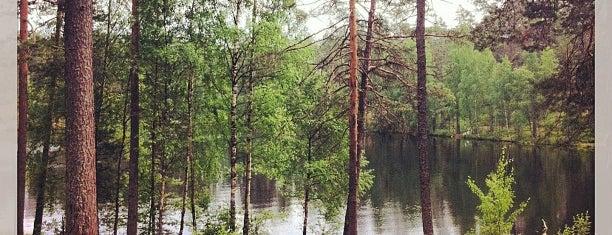 Орехово is one of Orte, die Nastya gefallen.