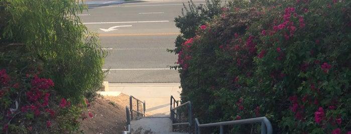 Lang Park is one of Posti che sono piaciuti a Scott.