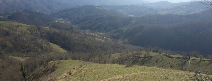 Karahasan Köyü is one of Ulus İlçesi Köyleri.