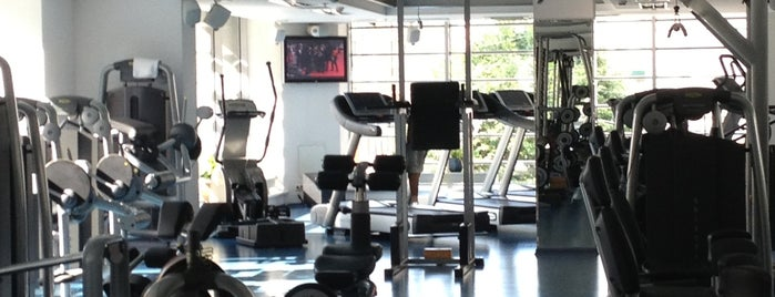 Top Gym is one of n.