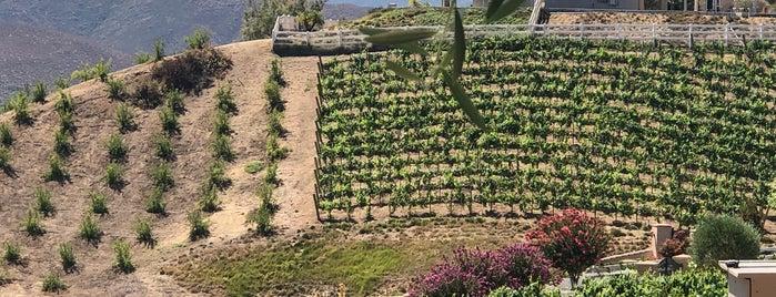 Oak Mountain Winery Patio is one of Michael 님이 좋아한 장소.