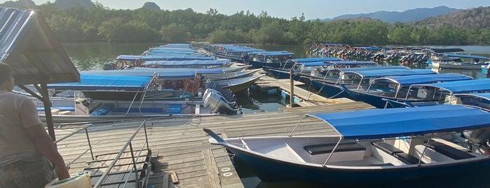 Tg Rhu Mangrove Tour is one of Langkawi.