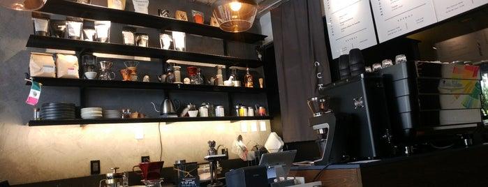 Specialty Coffee Mexico City