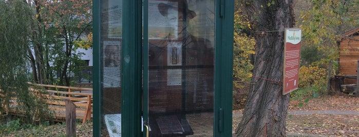 Örkény István elcsatangolt telefonfülkéje is one of Budai hegység/Pilis.