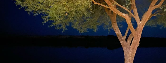 Lakes Park متنزه البحيرات is one of Drives Around Riyadh.